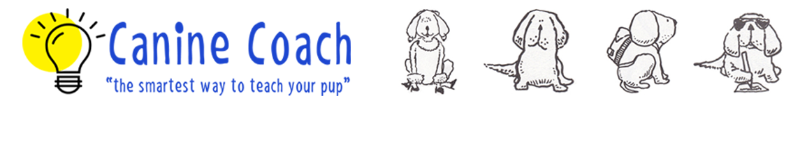 Canine Coach | In Home Dog Training | Durham Region